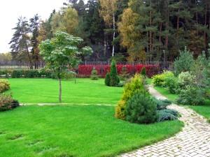 Оформление сада, ландшафтные работы